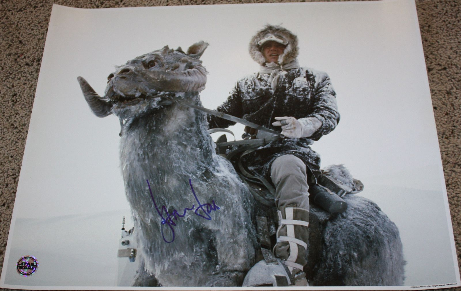 Harrison Ford - Star Wars - Han Solo - RARE SIGNED HUGE 16x20 - K9 w/ PROOF