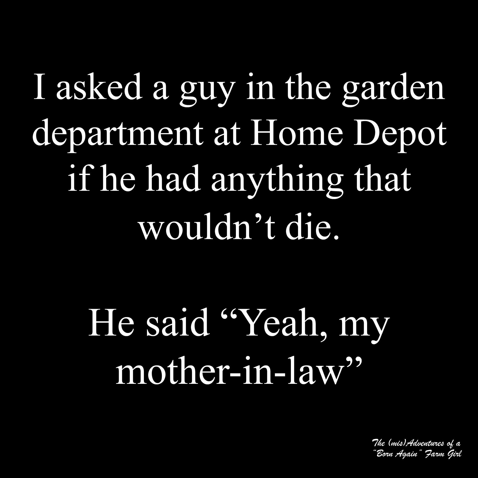 Mother in law jokes are funny Funny quotes, Narcissistic