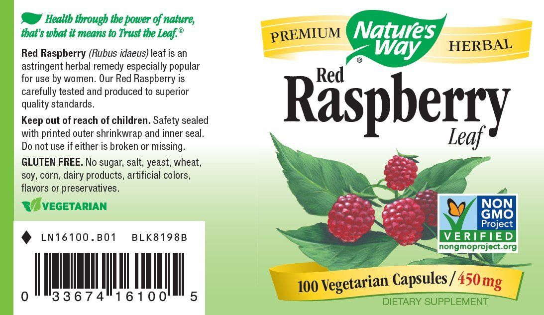 Fertility Pills - Natures Way Red Raspberry Leaf 450 mg 100