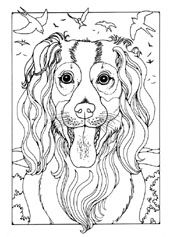 DOGS Colouring Pages FREE Download From D Palmer PLUS More To Choose