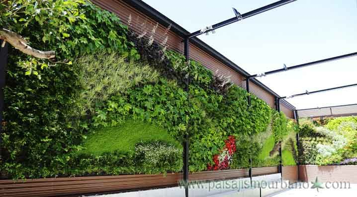 Los muros verdes mejoran nuestro entorno Paisajismo Urbano, líder - diseo de jardines urbanos