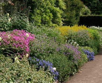 Grundkurs gartenplanung auf proportionen achten garten for Gartenidee beet