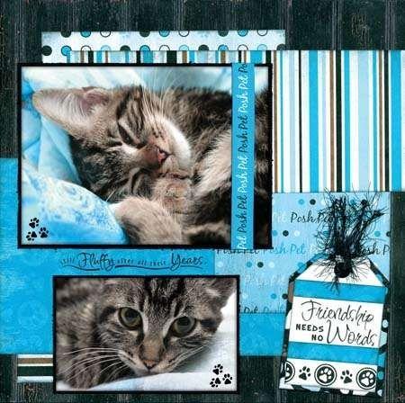 Pin By Debra Koepp On Cats Pinterest Scrapbooking Scrapbook And