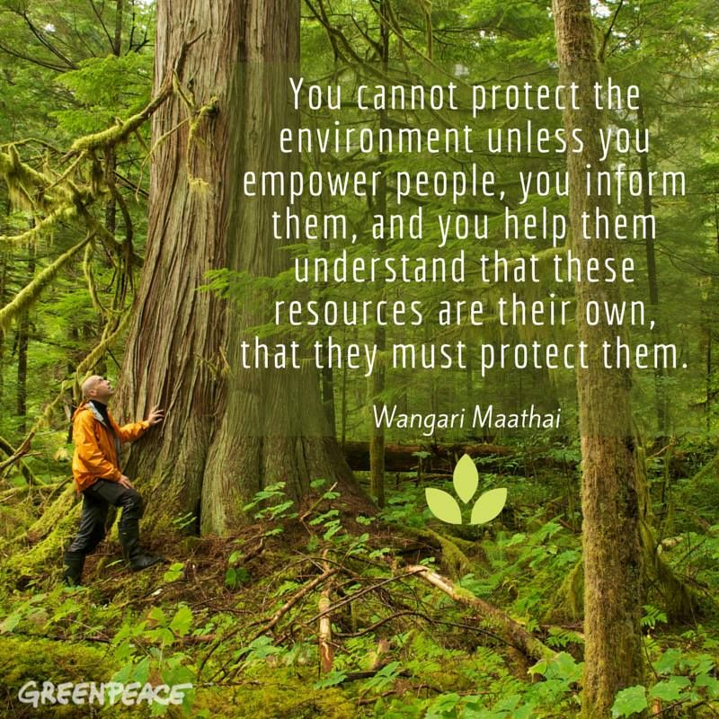 Greenpeace Usa Timeline Photo Environmental Quote Nature Mother Quotes He Wa Saddened By The New Paraphrase