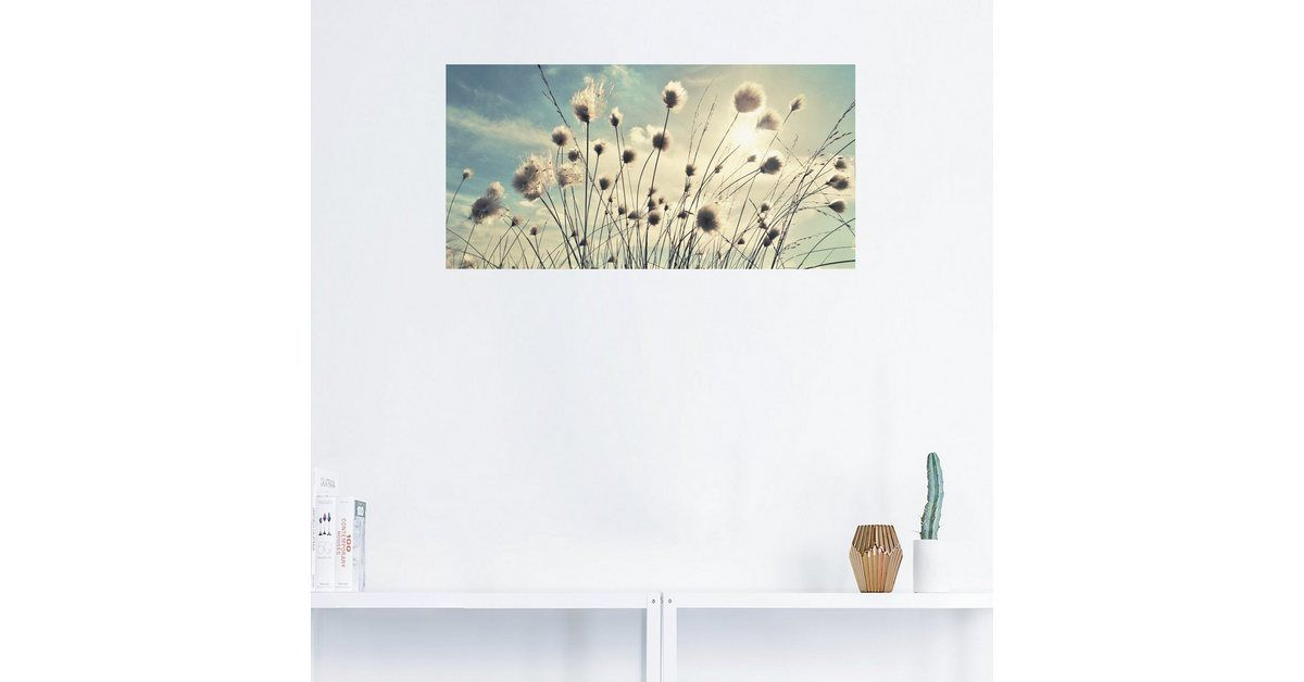 Photo of Buy Artland Premium Wall Film »Julia Delgado: Cotton Grass« online OTTO