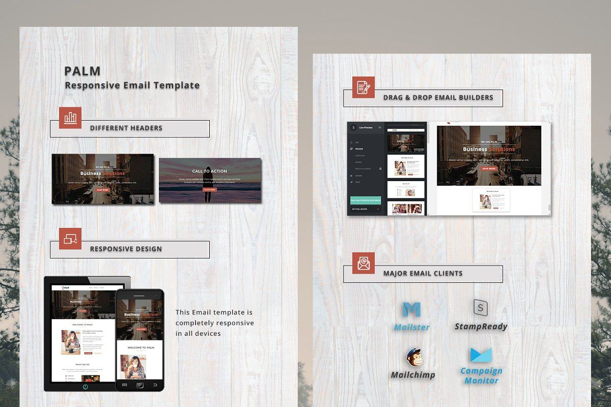 Palm Responsive Email Template Responsive Email Template Email Templates Responsive Email