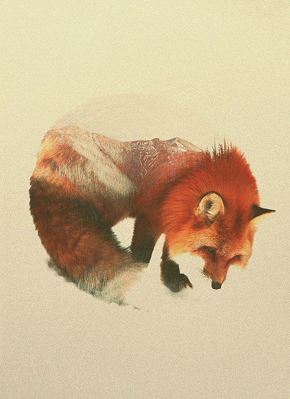 Artista noruego fusiona animales y sus hogares en fotografías de doble exposición - POP-PICTURE