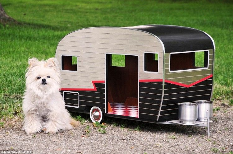 Pet Camper A Tiny Dog House Shaped Like A Trailer With Custom