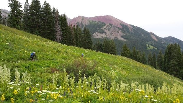 Riders on the 401 Trail in Crested Butte
