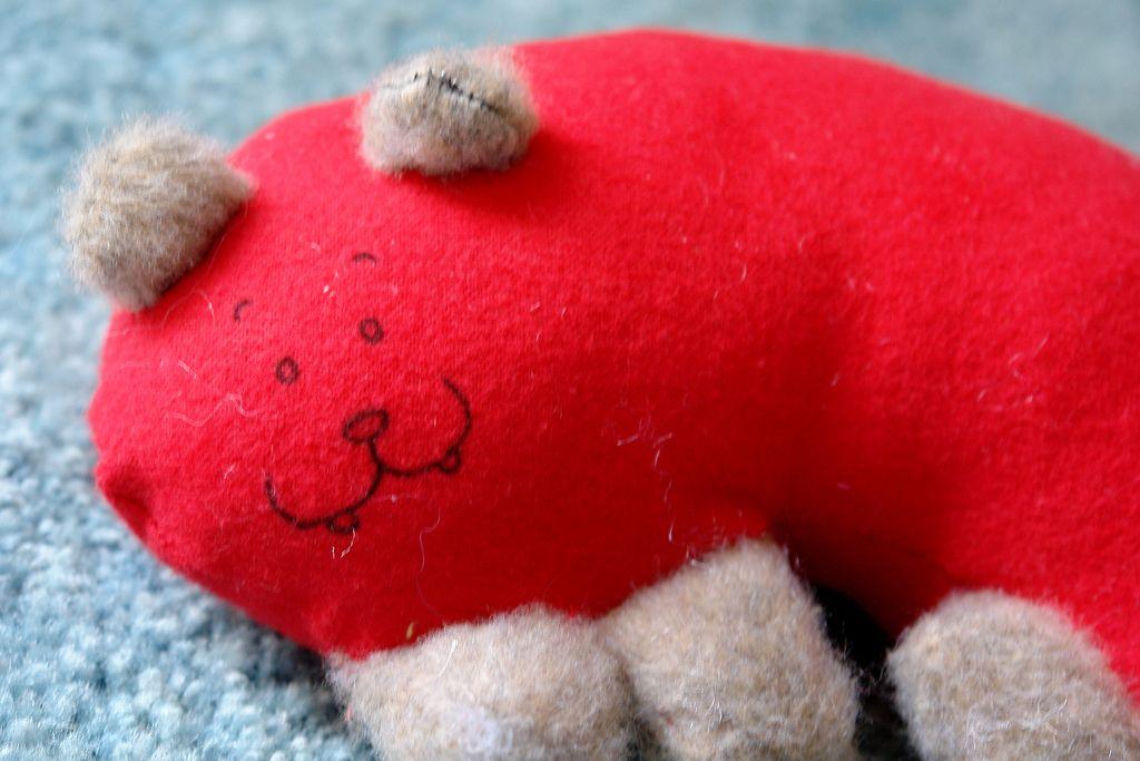 ello' I am a Kidney bear, rawr   Flickr - Photo Sharing!