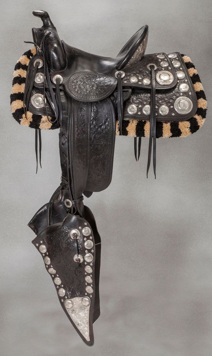 19th Century (s) saddles and tack