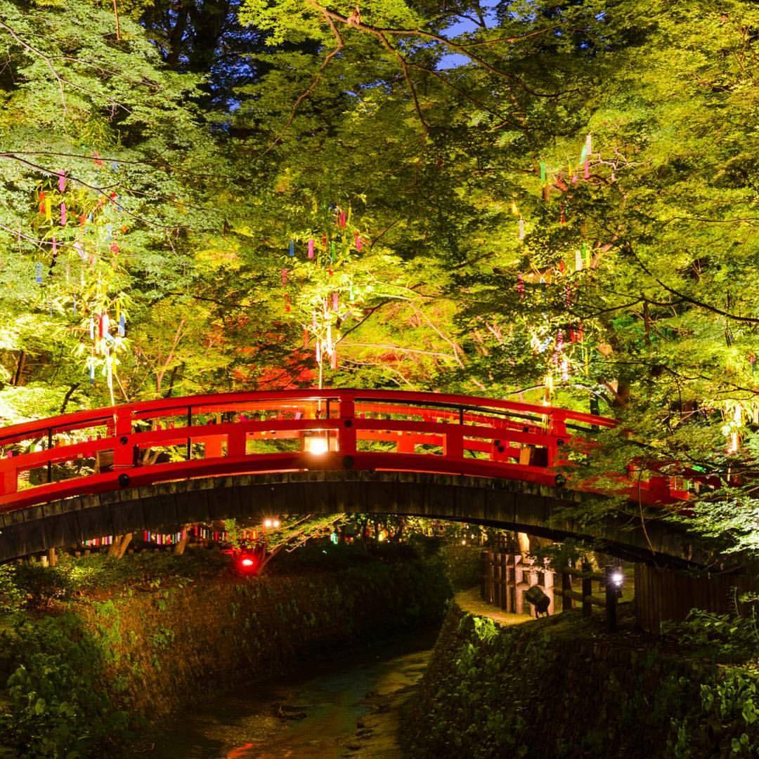 @kyoto_iitokoのInstagram写真をチェック • いいね!3,650件