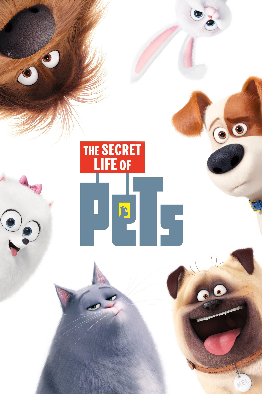 The Secret Life Of Pets 2016 Gratis Online Film Kijken Poker Banda Aceh
