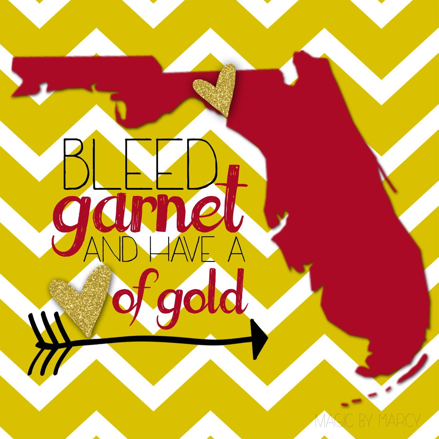 Florida State Seminoles Football Floor Mat: Florida State University National Champions! FSU Alumni Go
