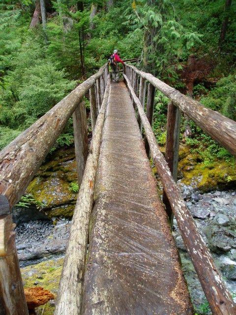 Hiking Upon The Log Bridge.