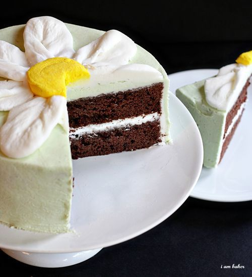 Thin Mint Cake w/ daisy on top... pretty perfect.