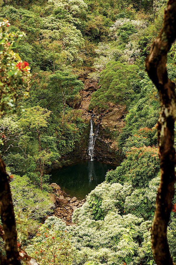 20167a6c2d309c8dc91d841490656e4f - Hana Maui Botanical Gardens Hana Hi