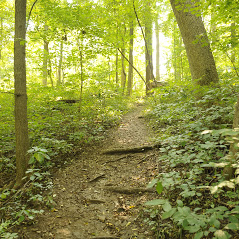 Visit French Lick West Baden Photos Things To Do In French Lick Indiana The Great Outdoors Southern Indiana French Lick In The Great Outdoors Outdoor Scenery