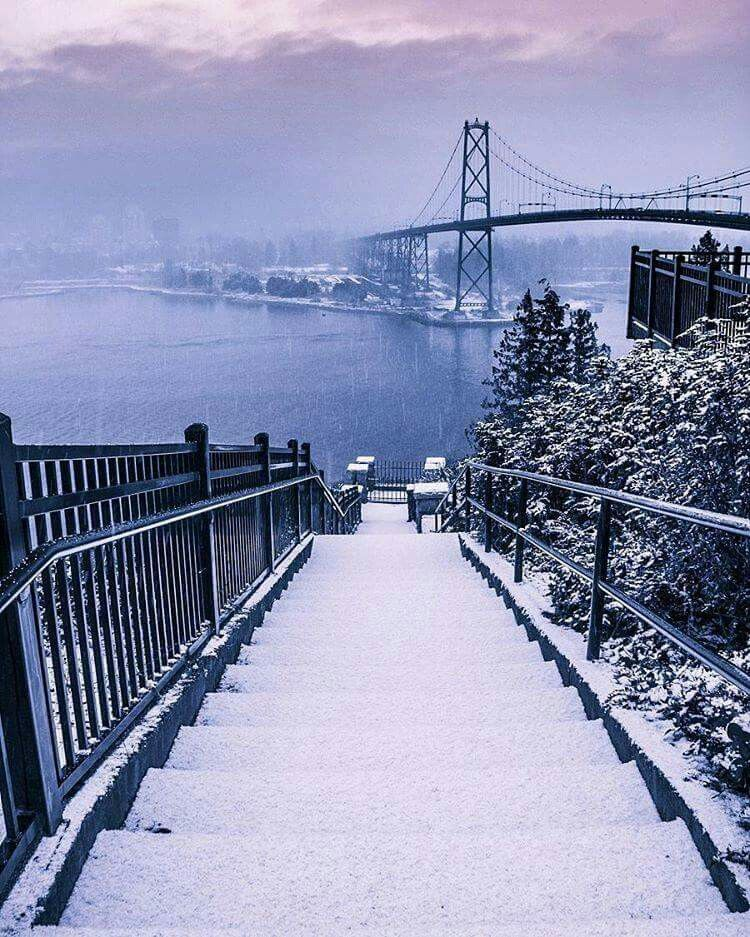 Stanley Park And The Lions Gate Bridge Winter Of 2017