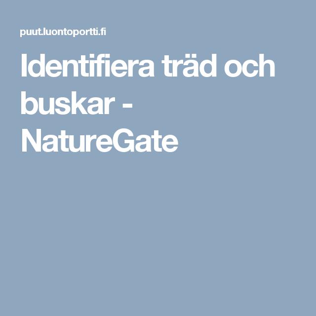 Identifiera träd och buskar - NatureGate