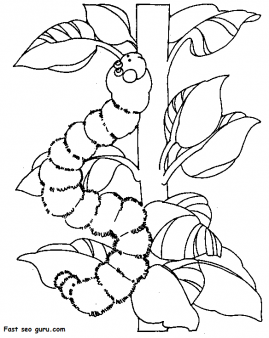 printable spring insects caterpillar coloring pages free