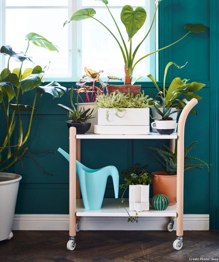 15 objets d co ikea petits prix plantes d 39 int rieur. Black Bedroom Furniture Sets. Home Design Ideas