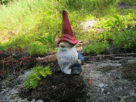 Crossing the Creek in bare feet was invented by Gnomes as Gnome Voyager II went from point A to point B across the stream.