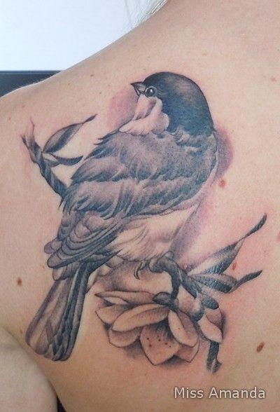 Beautiful Realistic Chickadee Tattoo By Australian Realism: Chickadee Tattoo, Robin Bird