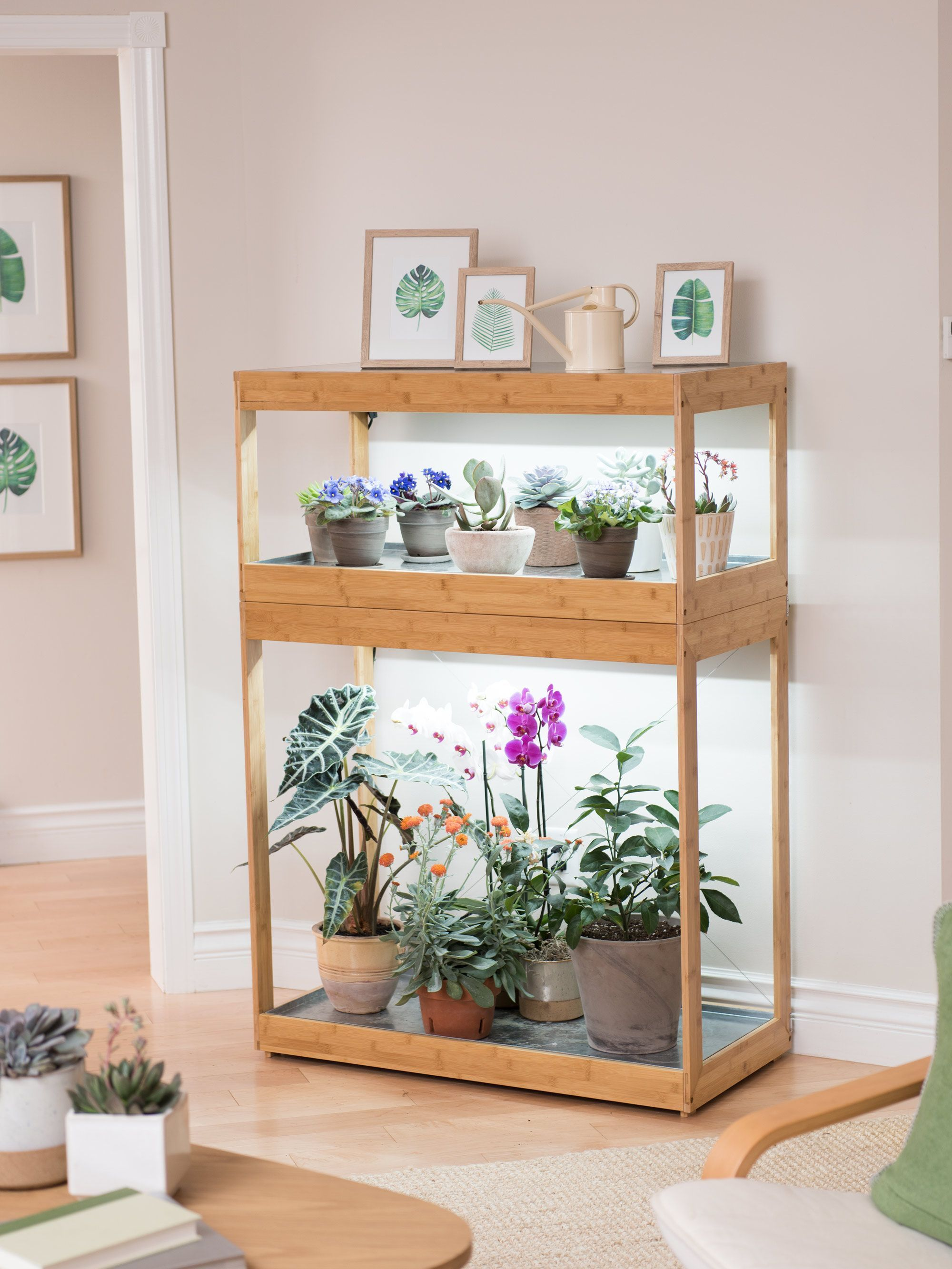 The Home Led Garden Has Two Tiers Of Versatile Growing Space Your Low Growing Herbs And Plants Can Go U Jardin Intérieur Planter Bambou Tablettes Pour Plantes