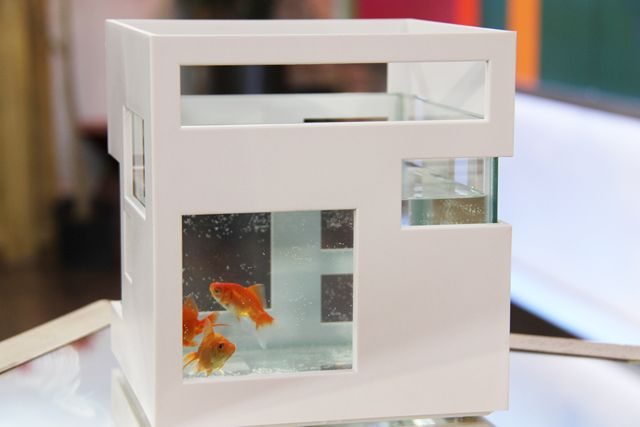 Umbra Fishhotel Aquarium Bowl | Pet Gifts | Pinterest | Shops, Tops and  Aquarium
