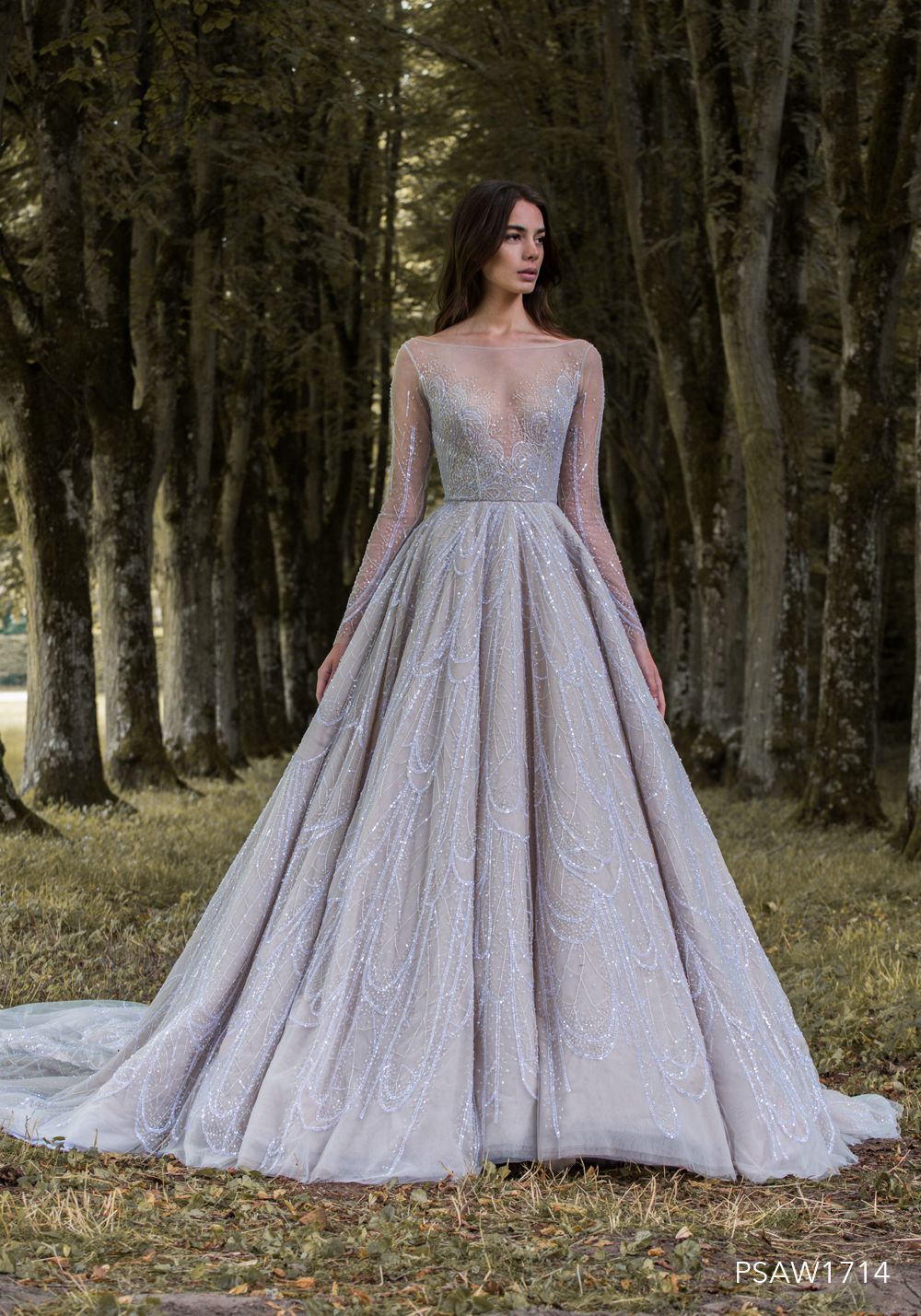 PSAW1714 - Ballgown with iridescent wing vein embroidery in shades ...