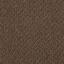 Shaw Danger Zone 0c009 Residential Carpet Berber Carpet Stair Runner Carpet Carpet Colors