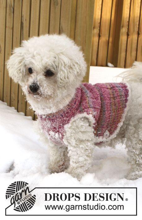 Warm Banjo / DROPS Extra 0-835 - Chaleco DROPS para perro tejido en ...