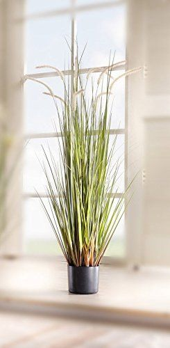 Plants & Vases Artificial 43 In Reed Grass W/Black