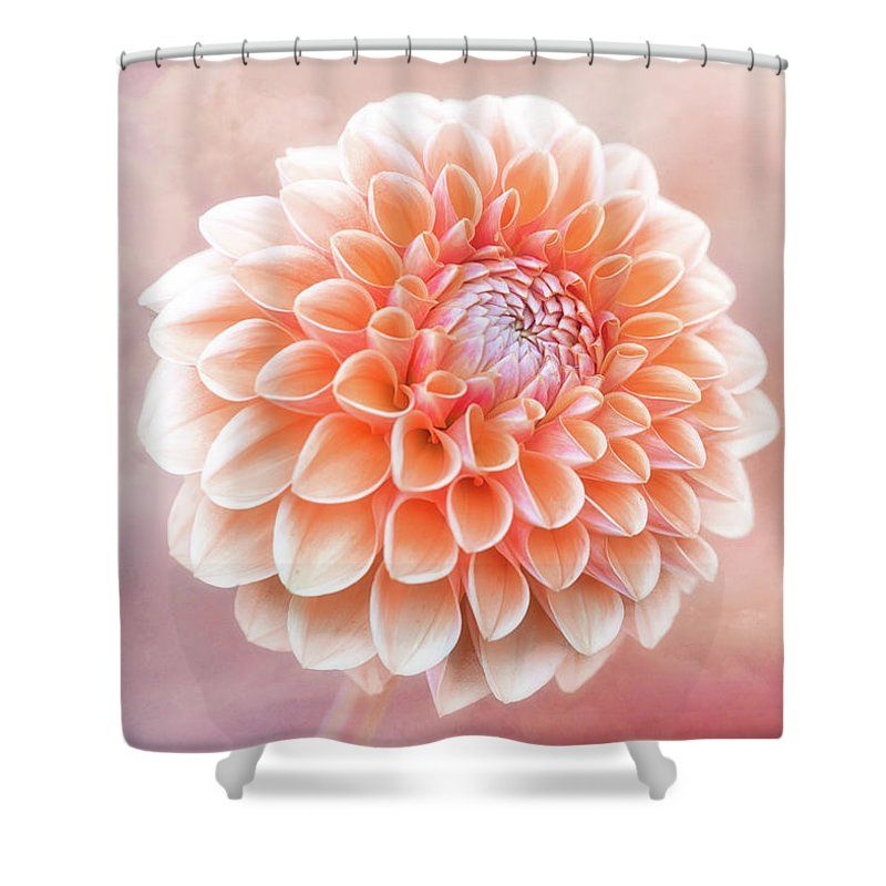 Glorious Salmon Dahlia Shower Curtain By Anita Pollak Flower Floral SalmonColor Blossom Bloom Our Curtains Are Made From 100 Polyester