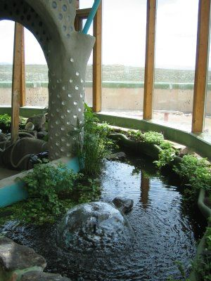 Tilapia filled filtration pond inside earthship greenhouse for Koi pond greenhouse