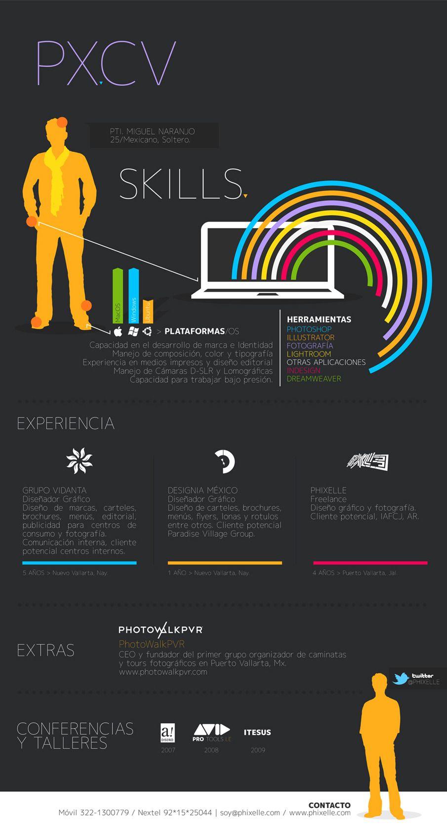Infographics - CV - Miguel Naranjo   Graphical Resume   Pinterest ...