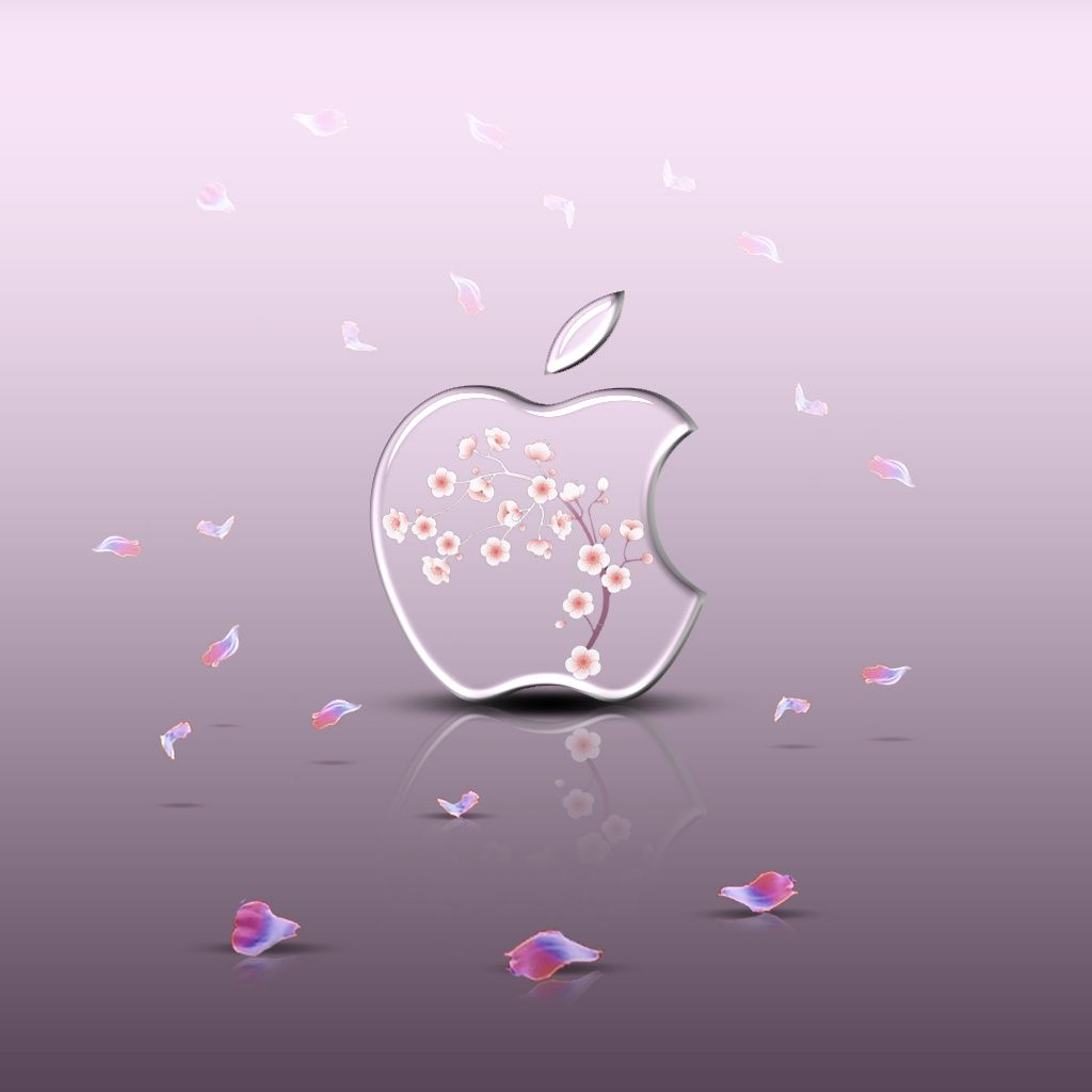 Wonderful Wallpaper Hello Kitty Apple - 201cedb92d6a89b605df281b02adefc8  You Should Have_33308.jpg