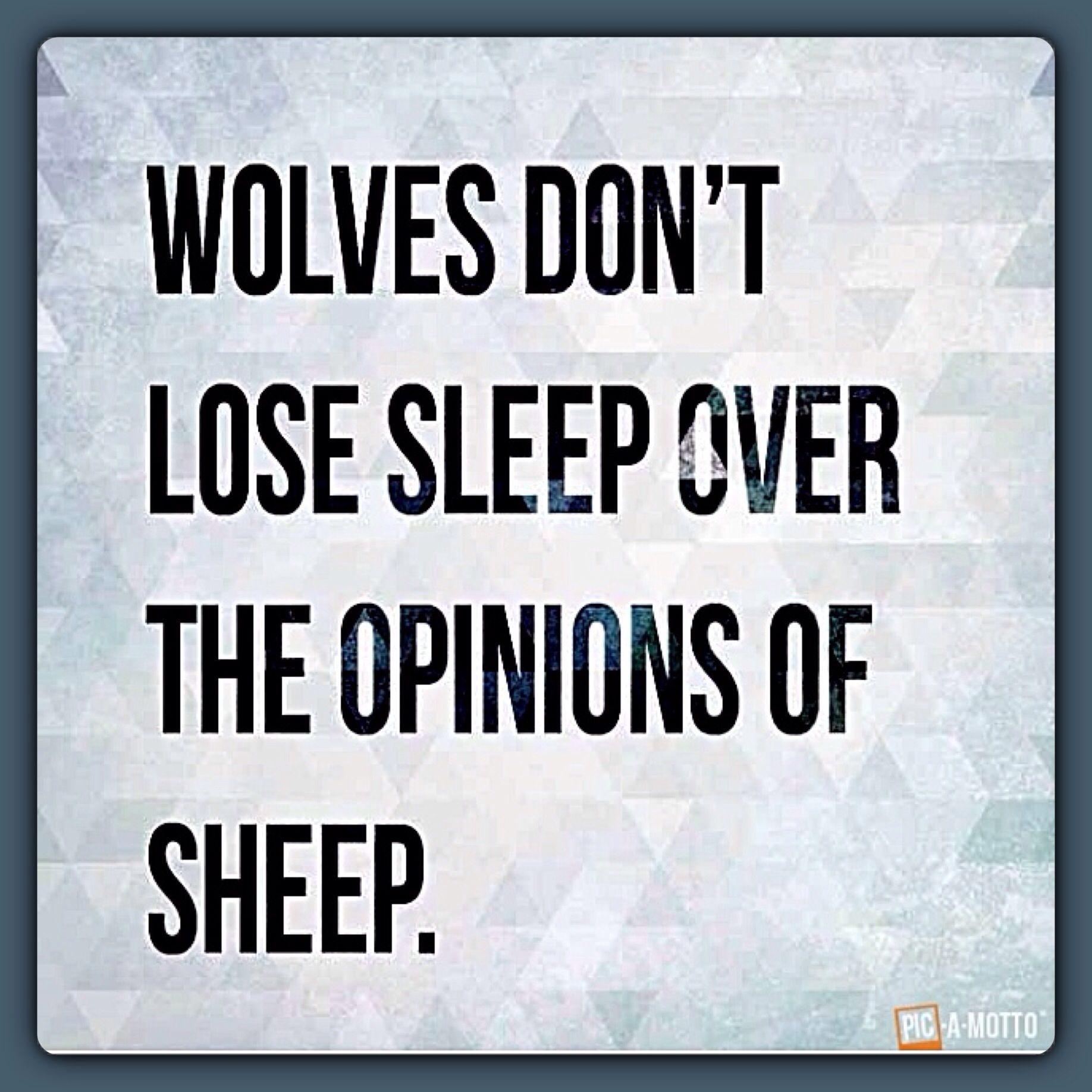Wolves don't lose sleep . . .