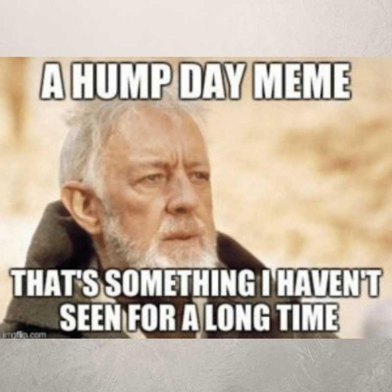 20 Hump Day Memes To Help You Laugh Thru Wednesday Funny Hump Day Memes Hump Day Meme Funny Friday Memes