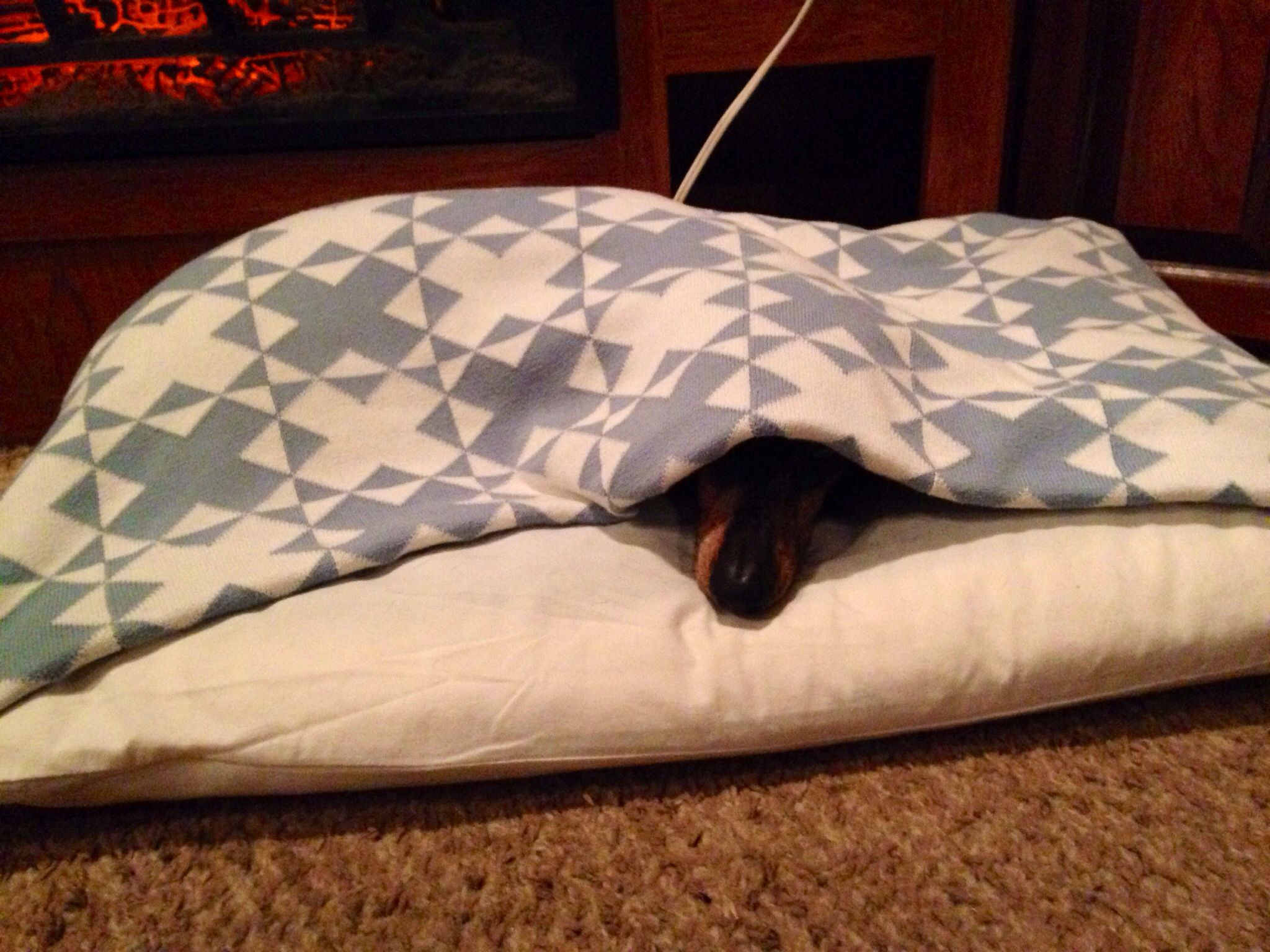 DIY pillowcase and blanket dog bed made my my hubby of all