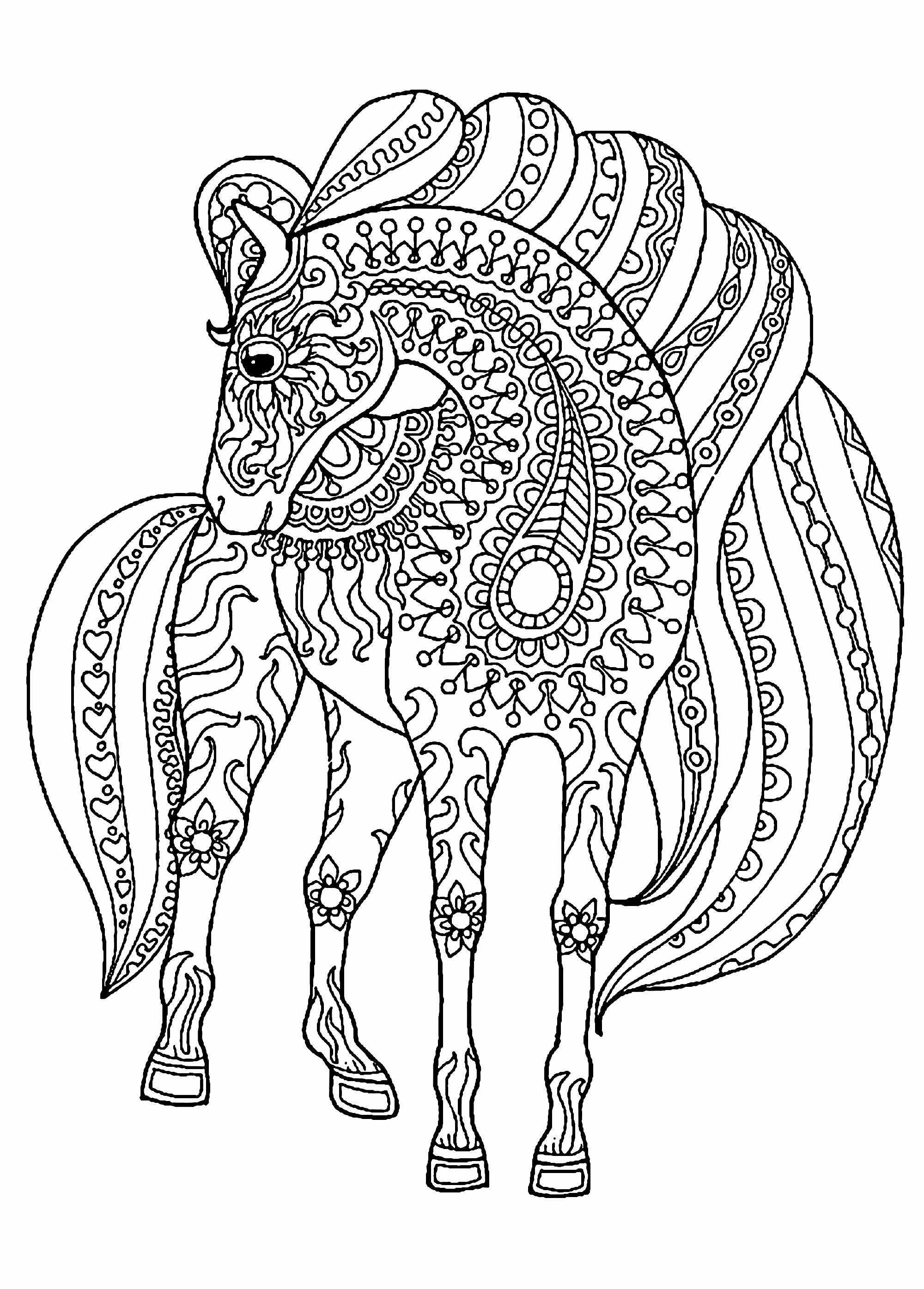 Coloring Horse Cartoon in 2020 | Horse coloring pages ...