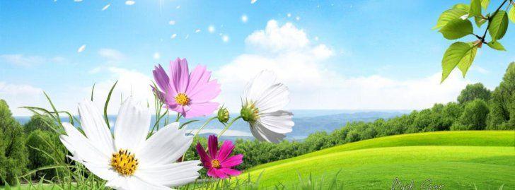 Flores Y Paisaje Portadas Para Facebook