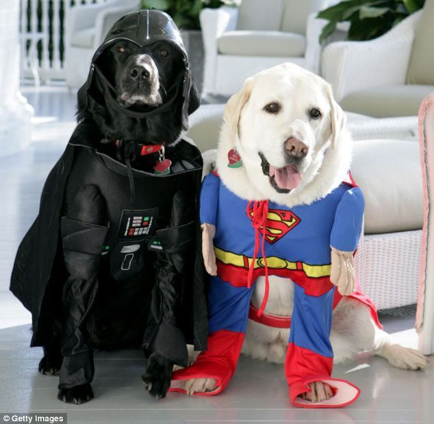 spooktacular photos show halloween at the white house over the decades dogs in costumescostumes - Halloween Costumes For Labradors