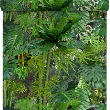 Papier Peint Papier Mur Vegetal Vert Papier Peint Pinterest