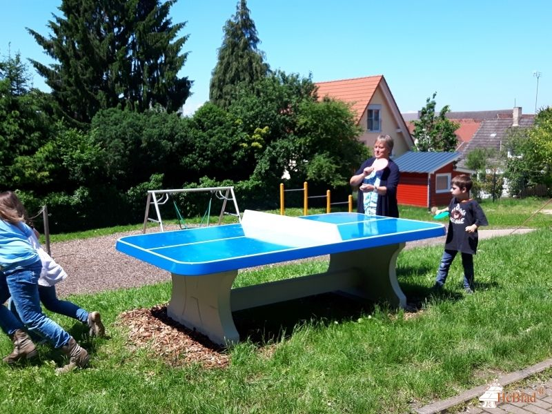 Pingpongtafel Afgerond Blauw bij Brunwart-von-Augheim Grundschule in Auggen