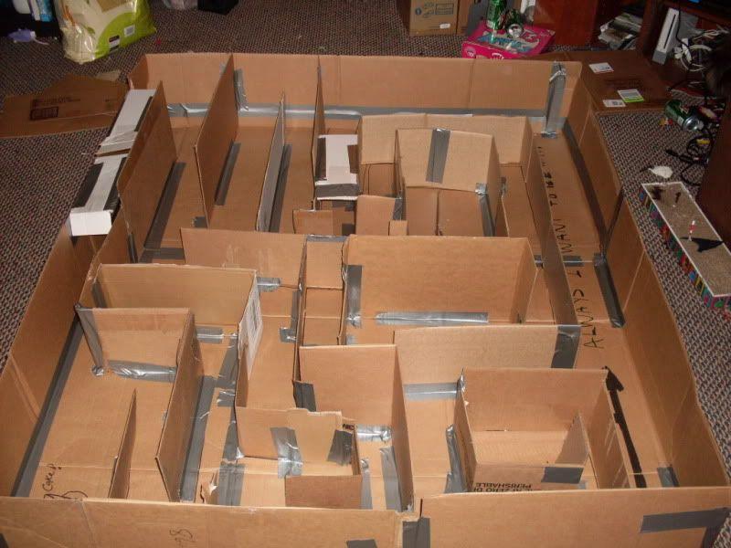 Cardboard Rat Maze Or Any Small Critter Lotsa Pics