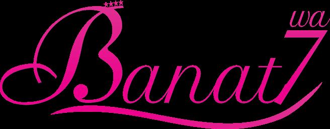 Banat7wa Company Logo Tech Company Logos Vimeo Logo