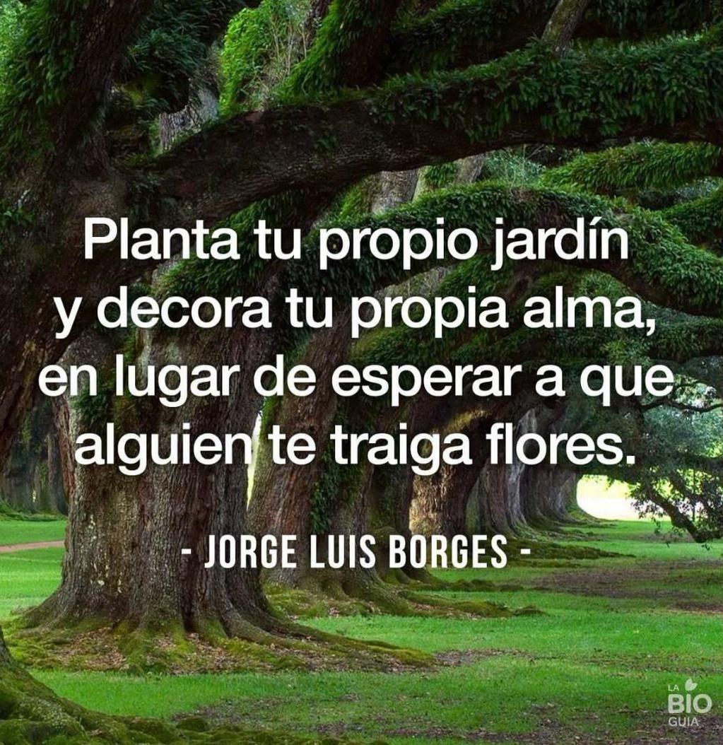 """""""Planta tu propio jardín y decora tu propia alma.."""" Jorge Luis Borges"""