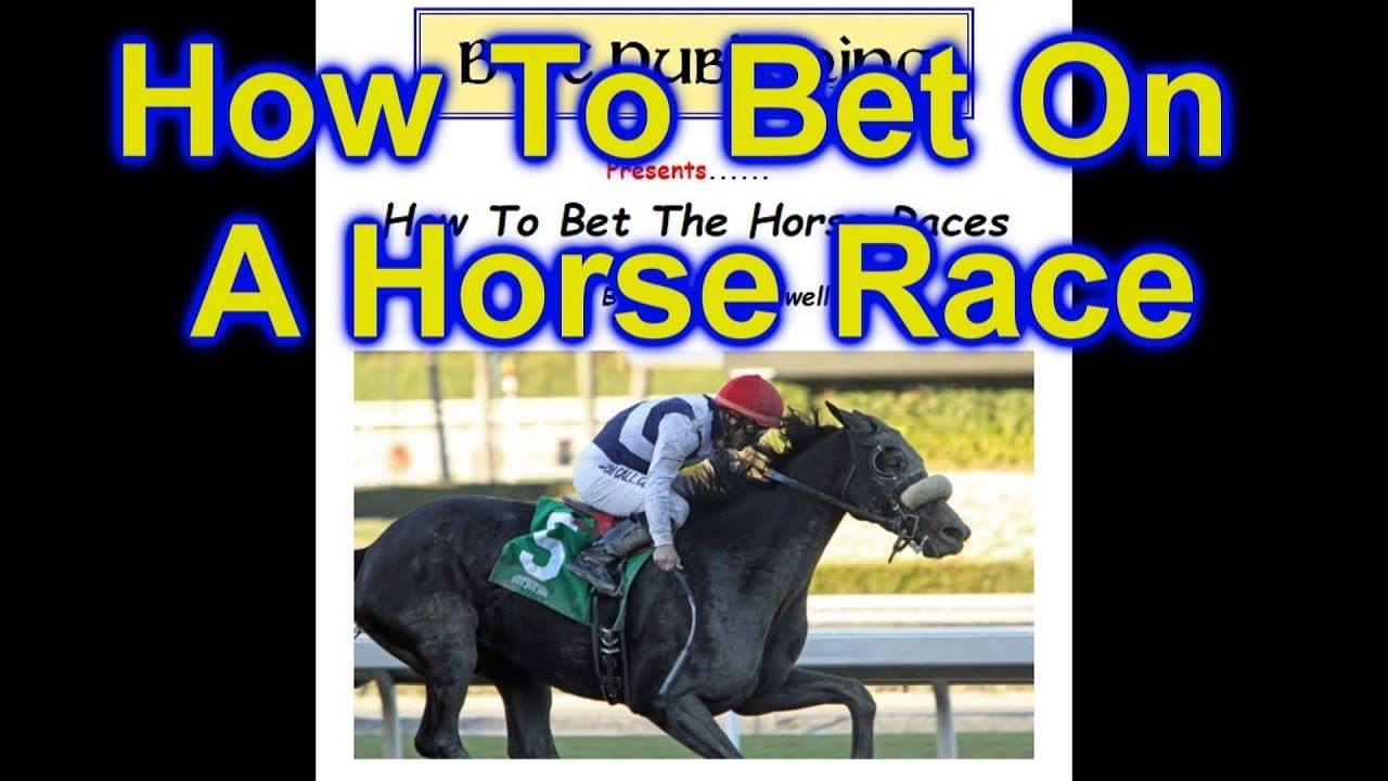 Footy show bets on horse four fold betting calculator horses